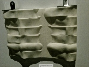 Sucrose walls at Nature's Toolbox Exhibit at Chicago's Field Museum