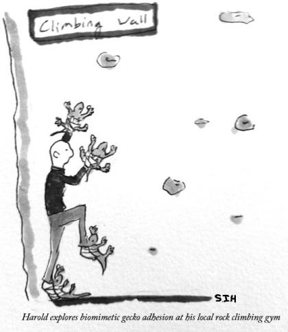 GeckoCartoon