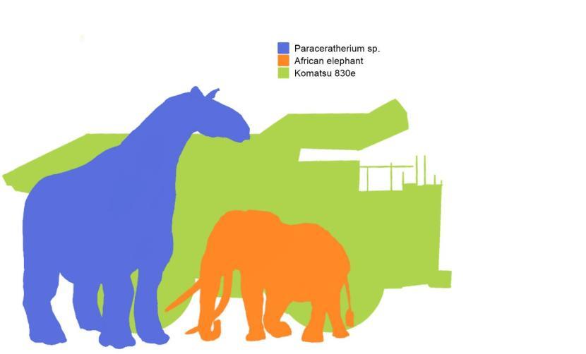 paraceratherium dump truck and elephant2